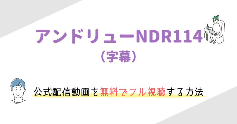 「アンドリューNDR114」(字幕)を無料でフル視聴する方法